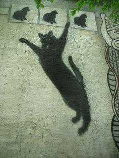 ¤ Springing cat, Street Art in Iena, Thuringe. Flickr
