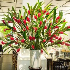 The Red Ginger flowers (Alpinia Purpurata) are an expression of passion and love, and a strong bond between lovers. #chopsueycafe #flowers #dempseyhill #singapore #redginger #sgcafe #igsg