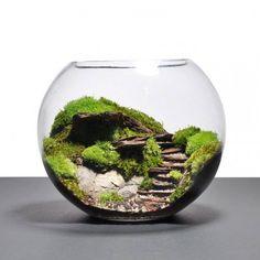 Mossy steps in a globe