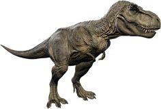 T Rex Jurassic Park, Jurassic Park Trilogy, Jurassic Park World, Dinosaur Images, Dinosaur Pictures, Indominus Rex, Tyrannosaurus Rex, Dinosaur Tattoos, All Dinosaurs