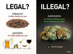 Please explain why Alcohol + Tobacco kills over 7.5 MILLION people per year and it's LEGAL. Yet - Marijuana kills 0 WORLDWIDE per year and is ILLEGAL. Please explain this. Thanks.