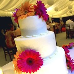 I want a wedding cake with bright colored gerber daisys. Gerber daisys will be my flowers used in my wedding.