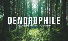@t o n i s t r a ◦✌︎❁◦ | I'm a Dendrophile