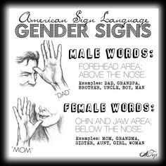 Gender signs in ASL: the majority of female gendered terms are signed on the lower face (the chin and jaw) whereas the male gendered terms are done on the top of the face (forehead area). Often the only difference between a pair of signs is their placement on the face, ie: SISTER (from the chin) and BROTHER (from the forehead) or similarly, as shown, MOM/DAD, but otherwise they are identical.