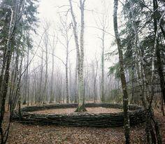 Dominique Bailly -- Domaine forestier de Crogny, Aube, France.