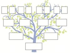 Generation Family Tree Template Family Tree Template With