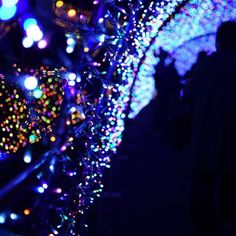 Instagram【mipopopo_po】さんの写真をピンしています。 《_ 光のトンネル✨ _  2016.11.09 #japan  #よみうりランド #風景 #夜景 #beautiful #nightview #ig_world #night #beautifulnight #イルミネーション #illumination #写真好きな人と繋がりたい #ファインダー越しの私の世界 #special_shots #wu_japan #nightphotography #view #instagood  #team_jp_  #icu_japan  #best_photogram #bestjapanpics #wp_photo_club #japan_daytime_view #happyholidays  #玉ボケ #一眼レフ #nikon #nikonphotography》