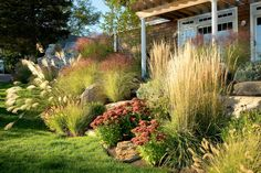 Great changes in heights and textures of these perennials for late season color.