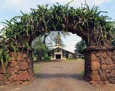 Church entry arch overgrown with night blooming cereus in Haleiwa Hawaii.