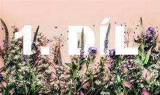 Atlas bylin: Bylinky stres a úzkost odplaví a spánek se dostaví - iDNES. Wreaths, Health, Plants, Door Wreaths, Health Care, Deco Mesh Wreaths, Plant, Floral Arrangements, Garlands