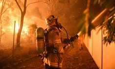 Firefighters tackling a bushfire close to homes in in Wattle Grove, Sydney, in April this year. Volunteer Firefighter, Firefighters, Firefighter Quotes, Bushfires In Australia, Weather News, Australian Bush, Winter Storm, Extreme Weather, Mother Earth