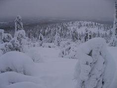 Ylläs, Finland 31.12.2009   Powderlove