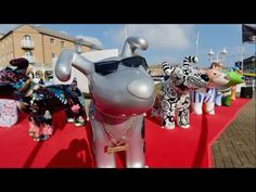 We've made this video to celebrate the success of our Snowdog campaign and share the key facts! We can't wait to see how successful our next trail will be - . Snowman And The Snowdog, Success, Sea, The Ocean, Ocean