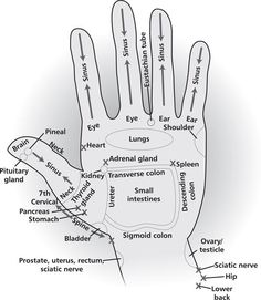 Energy areas of your hands that can be used for acupressure, energy healing, as well as direct hand massage to get the energy flow patterns for these areas of the body in a high vibrational format. Try drawing the Reiki Power Symbol over the area before y Young Living Oils, Young Living Essential Oils, Ayurveda, Hand Reflexology, Reflexology Points, Acupressure Points, Acupressure Therapy, Acupuncture Points, Doterra Essential Oils
