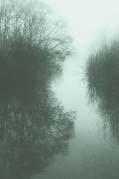 fog down the river by matteo | sartori