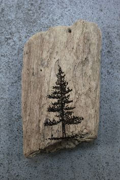 redwood tree - trying to find a good sketch or painting of a redwood tree for a tattoo!!