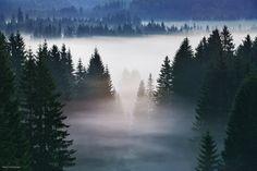 "Foggy View - <a href=""http://instagram.com/kilianschoenberger/"">@kilianschoenberger I N S T A G R A M</a>  <a href=""https://www.facebook.com/pages/Landscape-Photography-by-Kilian-Schoenberger/304631876263547"">L A N D S C A P E   P H O T O G R A P H Y facebook</a>"