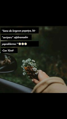 #can yücel #papatya sözleri Best Quotes, Life Quotes, True Words, Wallpaper Quotes, Beautiful Words, Cool Words, The Dreamers, Quotations, Literature