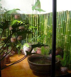 Green balcony garden