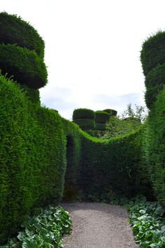Into the Labyrinth STOCK 5 by MirandaRose-Stock.deviantart.com on @DeviantArt