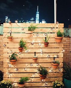 DIY Outdoor Decor To Spruce Up Your Backyard - DIY outdoor privacy screen with string lights and hanging plants. DIY outdoor privacy screen with s - Backyard String Lights, Backyard Lighting, Outdoor Lighting, Landscape Lighting, String Lighting, Pathway Lighting, Garden Lighting Ideas, Outside Lighting Ideas, Modern Lighting