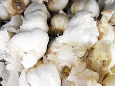 7/2014 How to Cure Your Home-Grown Garlic