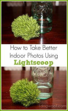 Use Lightscoop to improve indoor photography | One Dog Woof