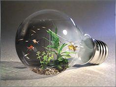 電球を水槽にしちゃった『Aqua Bulb』だそうです。ちょっと大きめの電球なら案外いい感じで利用できそうですね! deviantART
