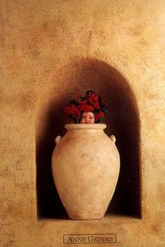 Infant/Child/Artistic photography  Anne Geddes N.Z. photographer