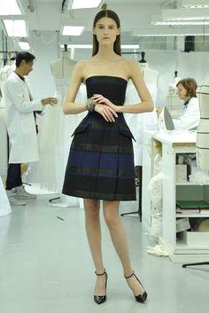Dior Pre-Fall 2013