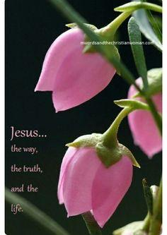 Jesus is the way...