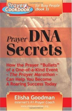 Prayer Cookbook for Busy People (Book Prayer DNA Secrets, a book by Elisha Goodman