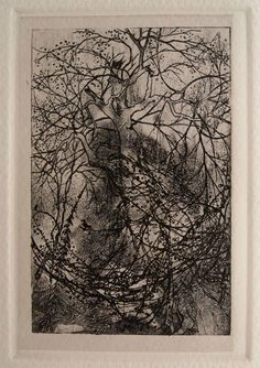 Heaveninawildflower: l'air du temps de Rodolphe Bresdin