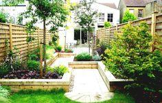 vier kleine Bäume grüner Rasen in einem kleinen Hinterhof Garten pflegeleicht