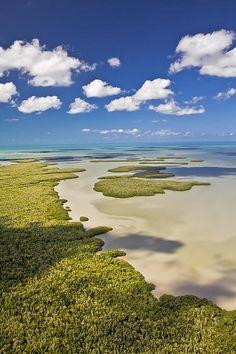 Ten Thousand Islands, Everglades National Park, Florida | Patrick Lynch, Fine Art America