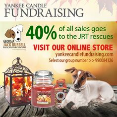Fill your home with the scents of the holidays this season with Yankee candles and products. Best of all, 40% of your purchase will go to the rescues!