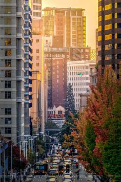 Fall Sunset in the City Seattle scene from Capitol Hill by Conor Musgrave