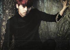 VIXX // Hyde // N
