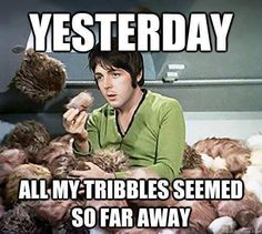 Yesterday all my tribbles seemed so far away. Star Trek meets The Beatles Star Wars, Star Trek Tos, Star Trek Meme, So Far Away, Nowhere Man, Geek Humor, To Infinity And Beyond, I Love Music, Laugh Out Loud