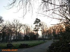 Sonnenaufgang in #Iserlohn