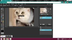 14 Best Pixlr Editor images in 2016 | Photography classes