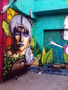 Finding that Brazil (Rio) and Berlin (Germany) - This one's in Brazil - have the most incredible street art...
