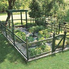 Moose proof garden?
