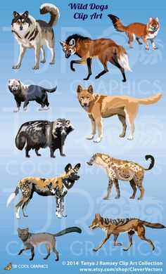 Wild Dogs Clip Art by CleverVectors on Etsy, $4.25