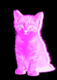 Image result for pastel goth pink