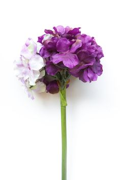 Mixed Purple Hydrangea Head on 14 Inch Stem  by SimplySerraFloral  https://www.etsy.com/shop/SimplySerraFloral?ref=hdr_shop_menu