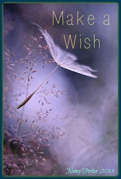 #wish #love #freedom #purple #inspiration #spiritual #nancyfortier