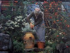 Tasha Tudor's Garden - Cerca con Google