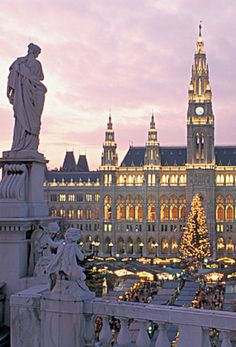 10 Best Christmas Markets in Europe - Vienna, Austria - Rathaus Places Around The World, Oh The Places You'll Go, Travel Around The World, Places To Travel, Places To Visit, Around The Worlds, Wonderful Places, Beautiful Places, Austria Travel