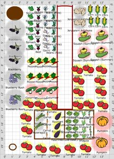 Garden Plan - veggie garden  Love this plan.... The only thing missing are cucumers along the fencing. PERFECTION